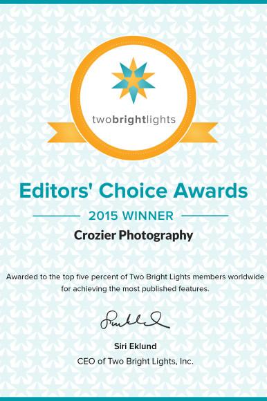We Won An Award! TwoBrightLights Editors choice Award